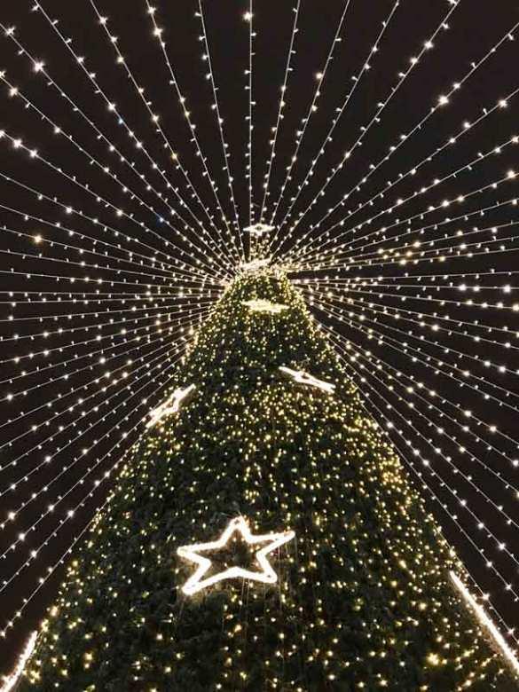 Az egyik legpompásabb karácsonyi vásár, amiről talán nem is hallottál - Nagyvárad | Nagyvarad-365letszikra-Szlafkai