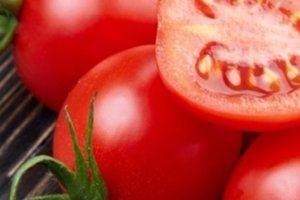 Κρατήστε φρέσκες τις ντομάτες σας για περισσότερο καιρό