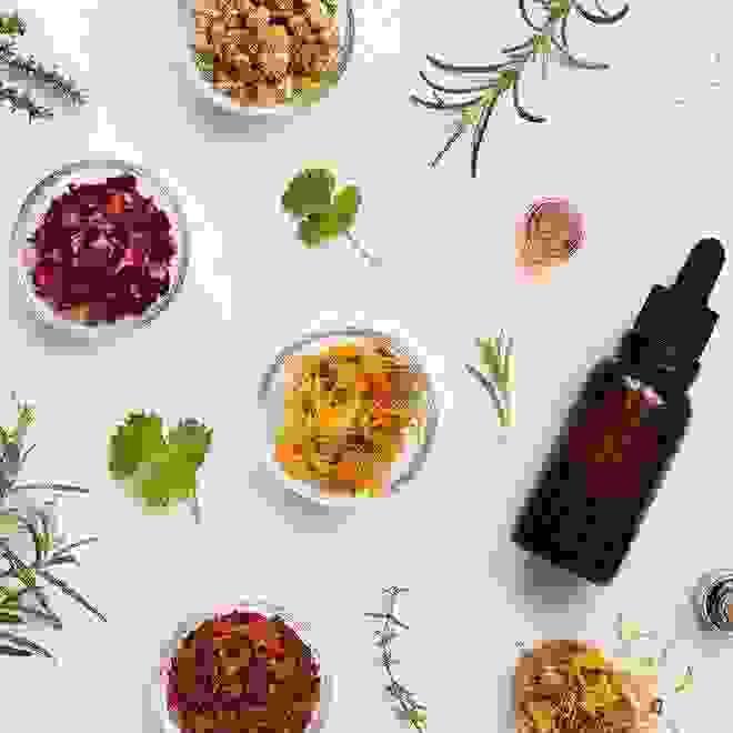 Ποια βότανα λειτουργούν ως φυτικά φάρμακα και για ποιες παθήσεις να τα προτιμήσεις - Shape.gr