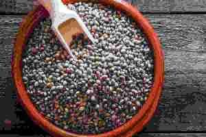 Ποιοι σπόροι σου κάνουν καλό ανάλογα με τις ανάγκες σου; - Shape.gr