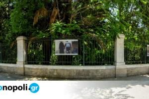 Παρόντες: Ένα φωτογραφικό πρότζεκτ για την καθημερινότητα της πανδημίας, στον Εθνικό Κήπο