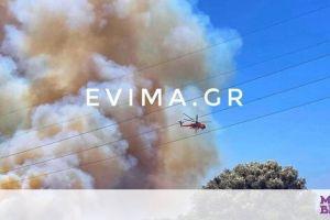 Εύβοια: Εκτός ελέγχου η φωτιά - Σε επιφυλακή για εκκένωση κάτοικοι οικισμού