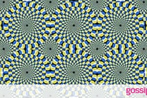 Η οπτική ψευδαίσθηση που θα σας τρελάνει! Κινούνται τα φίδια; (photo)