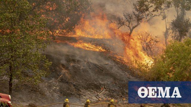 Πυρκαγιές στην Καλιφόρνια: Ανυπολόγιστες καταστροφές - Στάχτη πάνω από 2 εκατ. στρέμματα