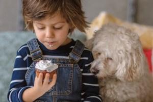 Τέλειο σνακ για τα παιδιά: Το ΚΕΙΚ ΧΩΡΙΣ ΑΛΕΥΡΙ ΚΑΙ ΧΩΡΙΣ ΖΑΧΑΡΗ από τη διαιτολόγο Κλειώ Δημητριάδου - Shape.gr