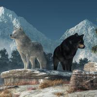 Отдели 1 минута, за да прочетеш тази притча за двата вълка! Ще я помниш вечно и ще я разказваш...