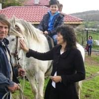 Как Бети и Ники с четири деца развъждат 700 крави из Родопите