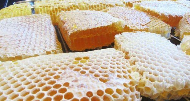 Билкарят дядо Митко на 95: Не купувайте мед а пита