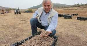 Родопчанин отглежда най-скъпата подправка в света
