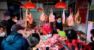 Учени: От Азия идва по-страшна пандемия от коронавируса ако не се вземат мерки