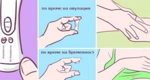 Първи признаци на бременността които не всяка жена знае