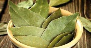 Сложете 4 листа дафинов лист под килима и ще се случи чудо
