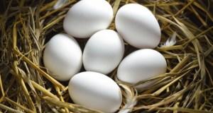 4 яйца за 7 дни в дома махат всяко зло от живота и връщат късмета