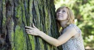 9 дървета с бяла енергия които ще прогонят всяко зло от къщата: