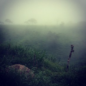Misty roads on the way to Monteverde