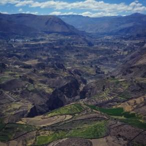 Pre-Incan Terraces of the Colca Valley