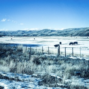 South Colorado