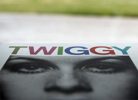 Twiggy-bok