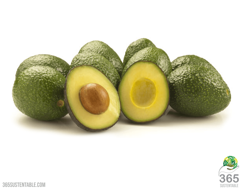 Palta-Beneficios