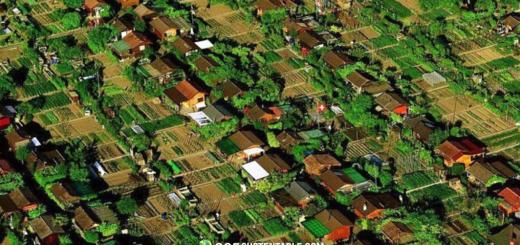 Les Avanchets, la Ciudad Suiza donde los habitantes cultivan su propio alimento.