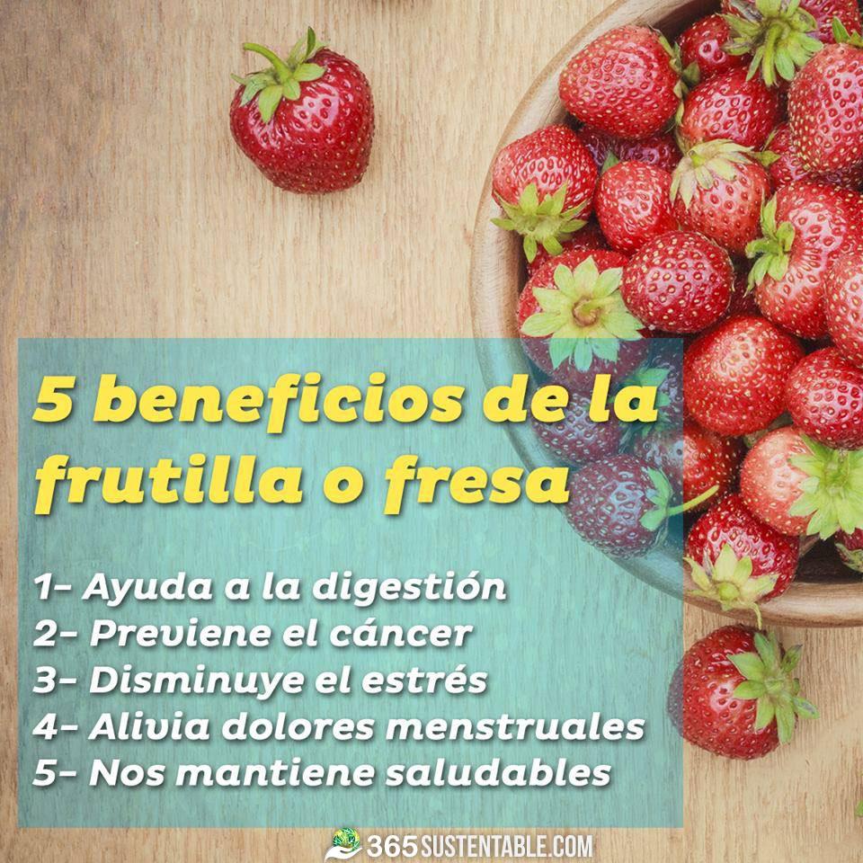 beneficios-fresa-frutillas