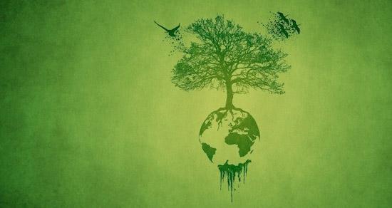 15 Frases Sobre Sustentabilidad 365sustentablecom