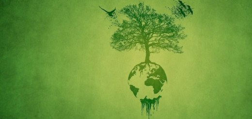 15 frases sobre sustentabilidad