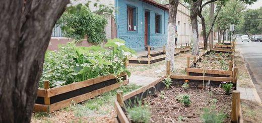 ¡Vecinos! ¡Plantemos alimentos en las veredas!