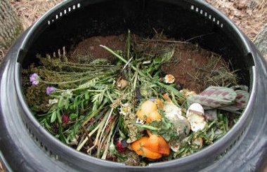 Cómo hacer tu propio Compost en 5 Pasos