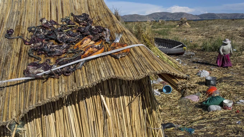 Lago Titicaca Contaminado, Kapi Cruz Grande