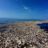 Un mar de basura en el Caribe Caroline Power