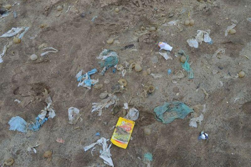 Playas de Buenos Aires, arena y tóxicos