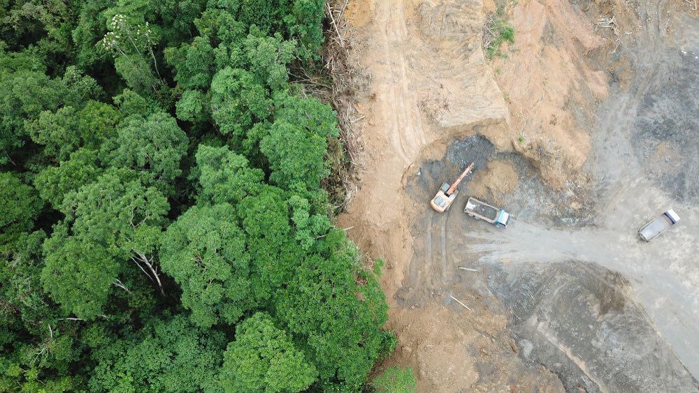 Amazonas deforestado de manera descontrolado.