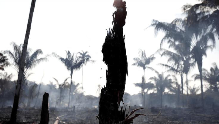 """El Ipam afirmó que el aumento de los incendios """"tiene relación con la deforestación"""" (Reuters)"""