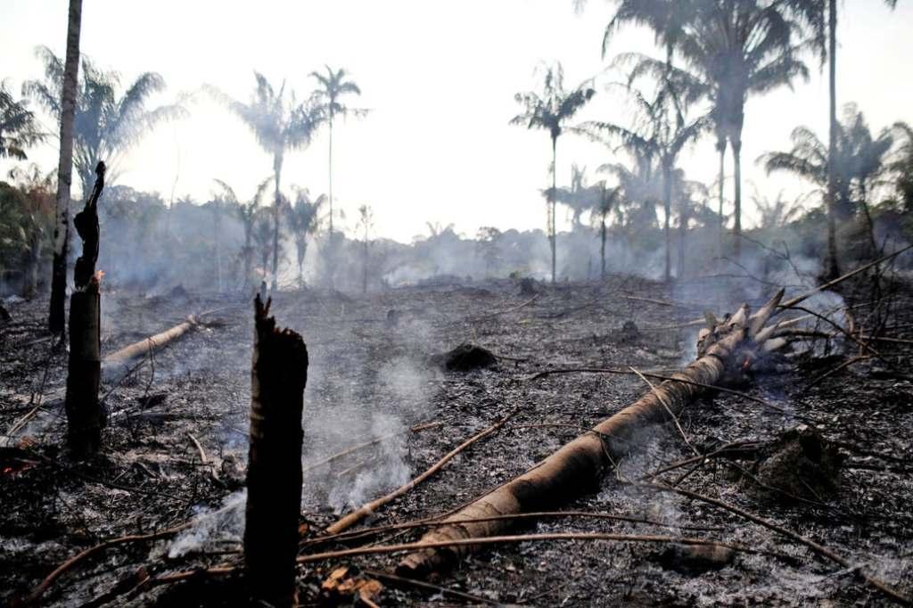 Los incendios intencionales se provocan para quemar tierras que luego se utilizan para cultivar Fuente: Reuters - Crédito: Bruno Kelly