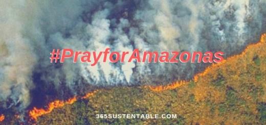La preocupación por las nuevas cifras se convirtió en tendencia de Twitter, con el hashtag #PrayForAmazonas.