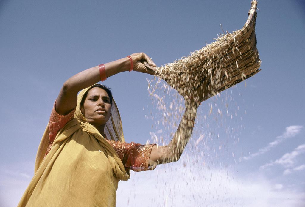 ONU Alerta, Una mujer agricultora de la India.