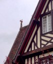 deauville_cats_rooftops5.jpg