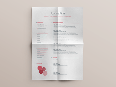 Free Resume template - vol. 2