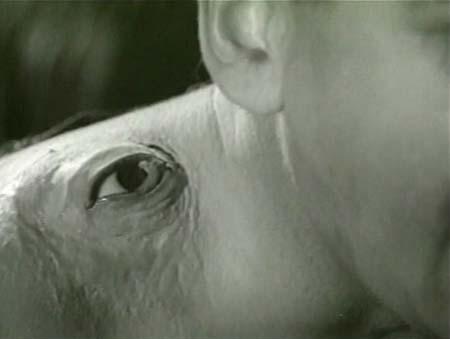 Still from The Manster (1959)