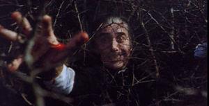 Still from Satanic Rites of Dracula (1973)