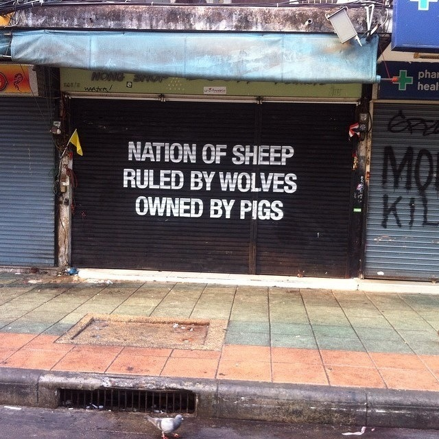 Sheep, Wolves & Pigs.