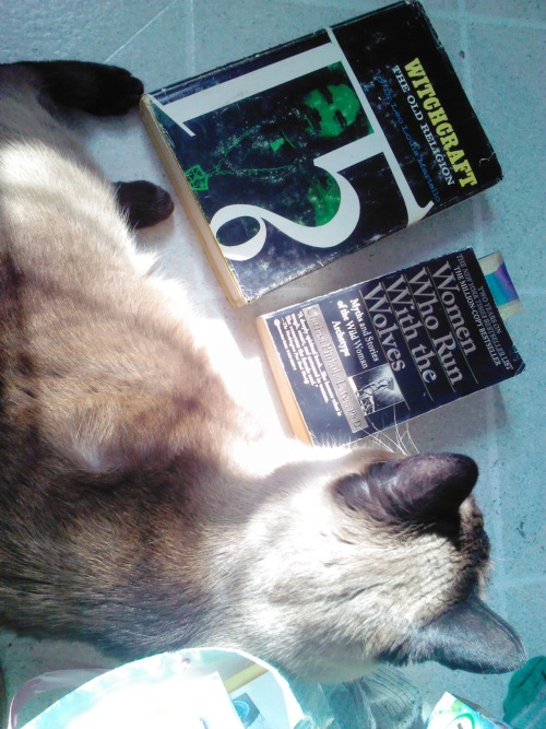 New old books arrived for me today! Yay. Leo Martello's Witchcraft the Old Religion and Clarissa Esté's Women Who Run with Wolves And my lit kit.