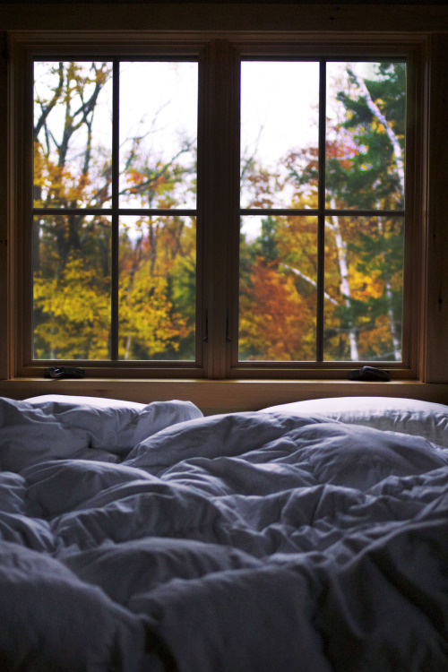 comfy bed fall autumn Window comfortable myphoto leaves ...