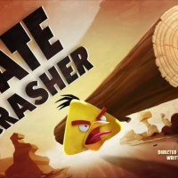 Angry Birds Toons: Gate Crasher