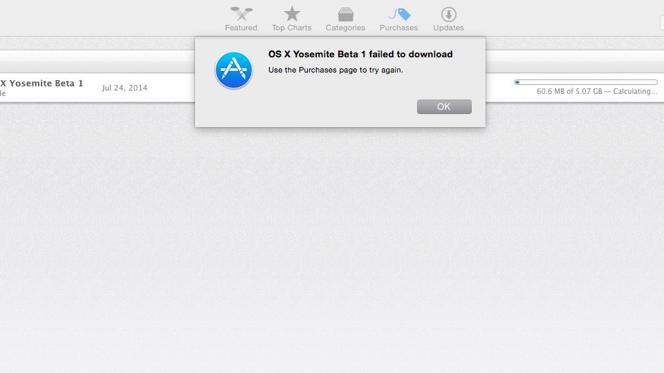 OS X Yosemite Beta 1 failed to download