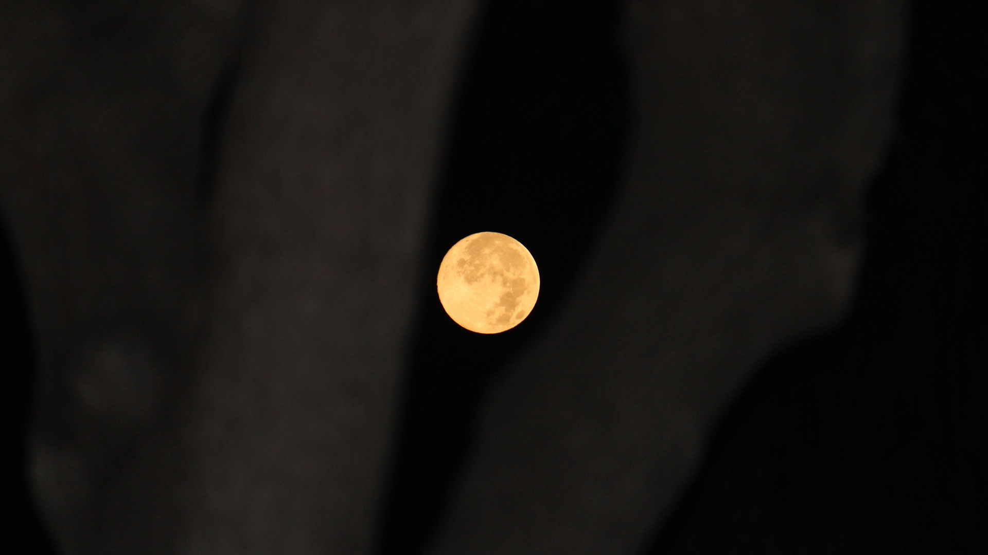 Supermoon on August 10, 2014
