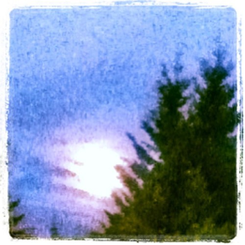 The full summer moon. Oh I adore the white faced lady!