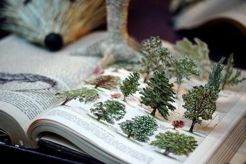 book forest pop-up - livre pop-up forêt