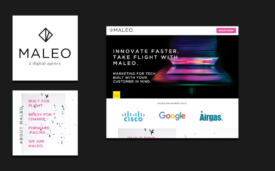 Maleo Studio Brand Design